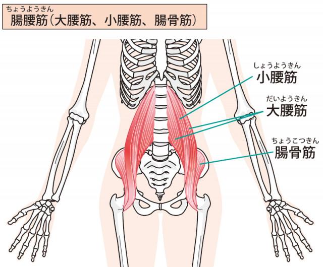 妊娠中〜出産後の腰痛に対してのアプローチ