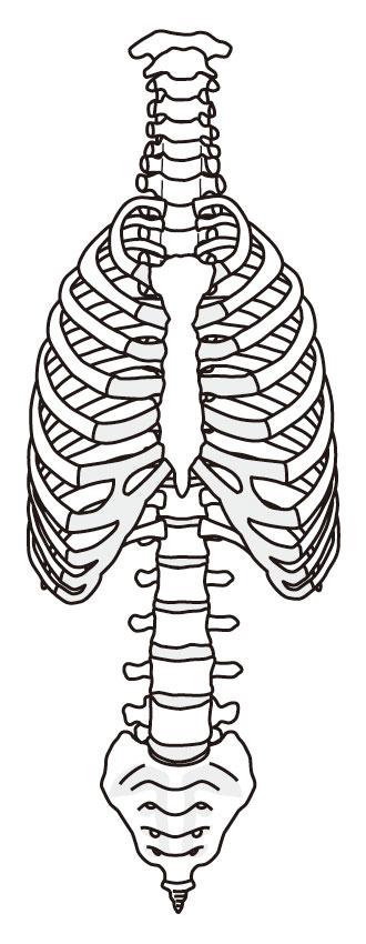 肋間神経痛とは?